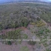 Belize-10-Acres-Bullet-Tree-Village31
