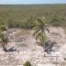 Belize-Club-Caribbean-Lots-For-Sale5