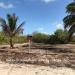 Club-Caribbean-Parcel-486