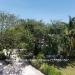 Belize-A-300-Grand-Baymen-Gardens1