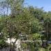 Belize-A-300-Grand-Baymen-Gardens7