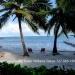 Belize-Condo-in-the-Banana-Beach-Resort11
