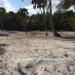 Oceanfront Property Habaneros Bay1