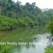 Belize Land 50 Acres near Belmopan1