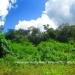 Belize Land 50 Acres near Belmopan14