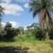Two Belize Lots near San Ignacio Town1