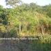Belize-Santa-Elena-Lot0