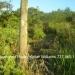 Belize-Santa-Elena-Lot1