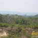 belize-real-estate_72-22-acres-in-branch-mouth-14