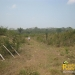 belize-real-estate_72-22-acres-in-branch-mouth-6