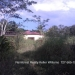 20 Acres with fruit trees1