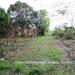 Belize Land 20 Acres near Belmopan Cayo District17
