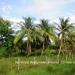 Belize Land 20 Acres near Belmopan Cayo District22