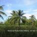 Belize Land 20 Acres near Belmopan Cayo District24