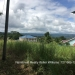 Maya Vista Lots for Sale San Ignacio7