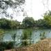 Belize-Sittee-River-3-Acres-Near-Hopkins-10