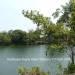 Belize-Sittee-River-3-Acres-Near-Hopkins-6
