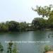 Belize-Sittee-River-3-Acres-Near-Hopkins-7