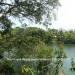 Belize-Sittee-River-3-Acres-Near-Hopkins-8