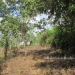 1.34 acres of sloping land in Belize for Sale12
