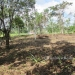 1.34 acres of sloping land in Belize for Sale3