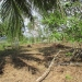 1.34 acres of sloping land in Belize for Sale4