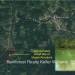 Belize Property 223 Acres Half Mile Riverfront7