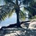 Belize-Oceanfront-Parcel-Placencia1