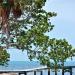 Belize-Oceanfront-Parcel-Placencia12