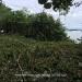 Belize-Oceanfront-Parcel-Placencia7