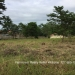Belize Lot for Sale in Kontiki San Ignacio1