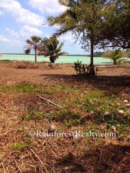40-acres-with-685-ft-of-oceanfront-in-northern-belize