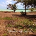 40 Acres with 685 Ft of Oceanfront in Northern Belize7