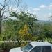 Belize-Double-Residential-Corner-Lot-1