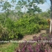 Belize-Double-Residential-Corner-Lot-4