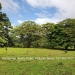 Belize-4-acre-lot-with-beautiful-Riverfront4