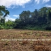 Belize-4-acre-lot-with-beautiful-Riverfront5