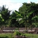 Belize-3-Bedroom-Home-Santa-Familia5