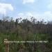 Belize-34.66-Acres-Iguana-Creek-Cayo3