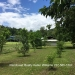 74.5 Acre Farm in Barton Creek, Cayo6