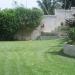 Yard #1