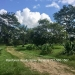 Belize-36-Acres-with-Home-2
