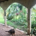 Belize-36-Acres-with-Home-33