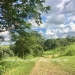 Belize-36-Acres-with-Home-4
