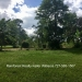 Belize-36-Acres-with-Home-47