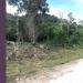 30-Acres-Farm-Land-in-Western-Belize3