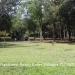 150Acre Tree Farm Los Tambos11