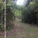 150Acre Tree Farm Los Tambos4
