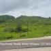 35.50 acres Society Hall Cayo District5