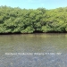 Belize-5-Acres-on-Southern-Long-Caye7